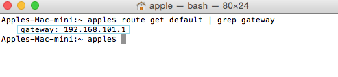 Mac OSX Terminal - Network Default Gateway