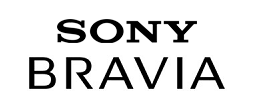 Sony on sony computers