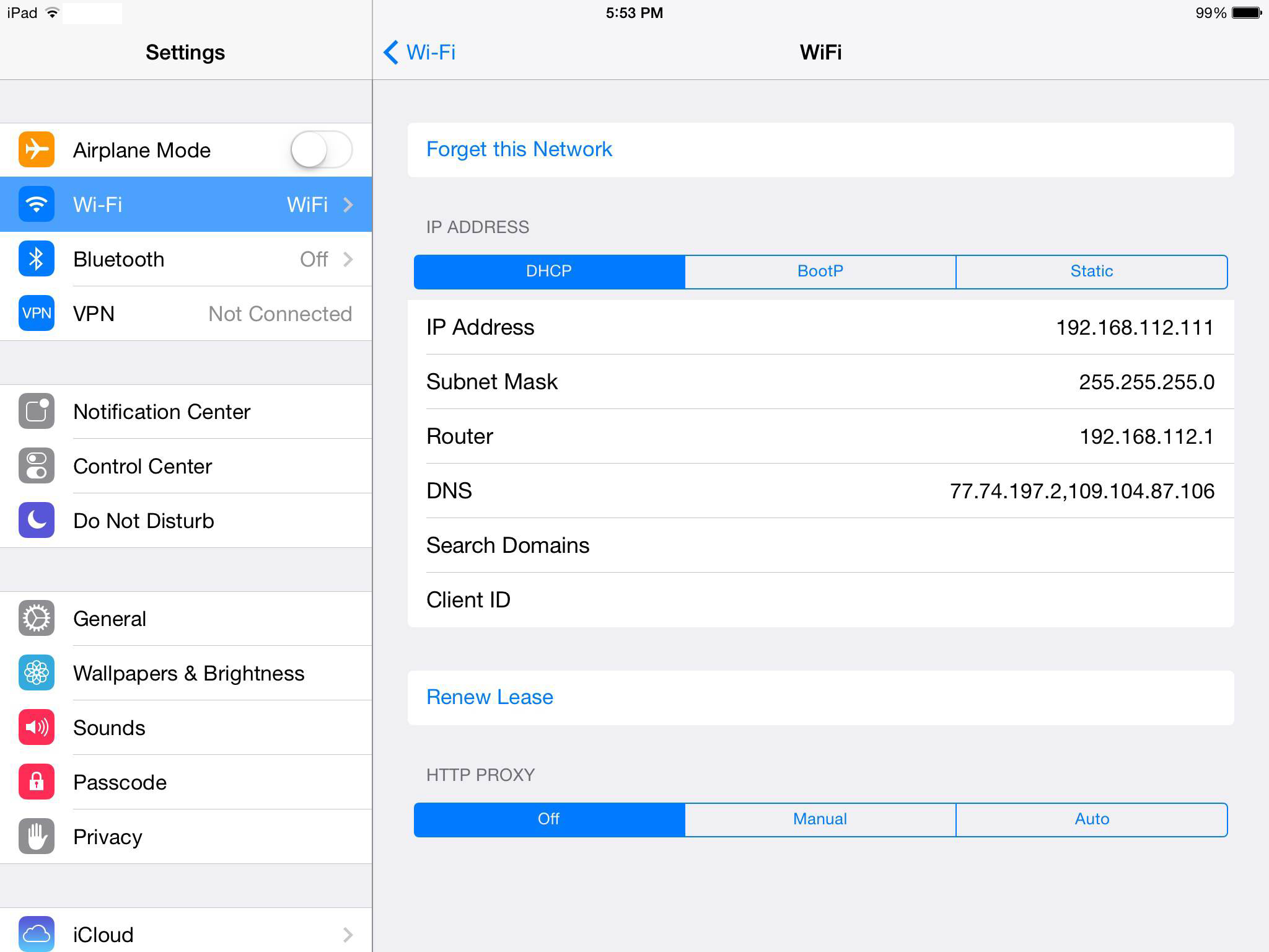 iOS iPad DNS settings
