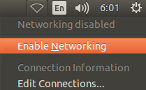 linux-enable-networking
