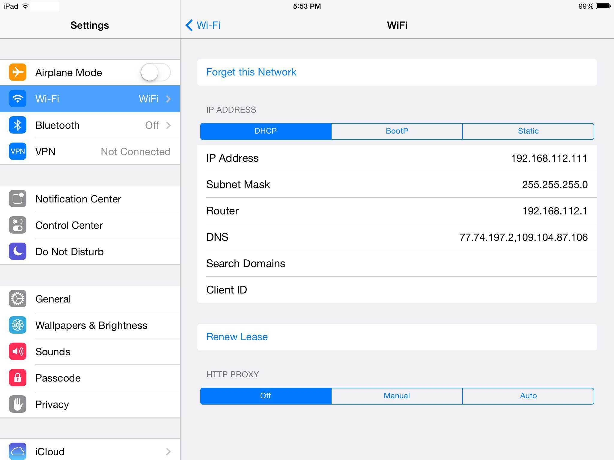 iOS iPad DNS settings