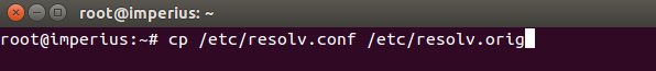 Linux terminal backup dns