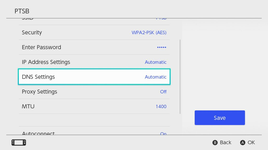 Switch DNS Settings